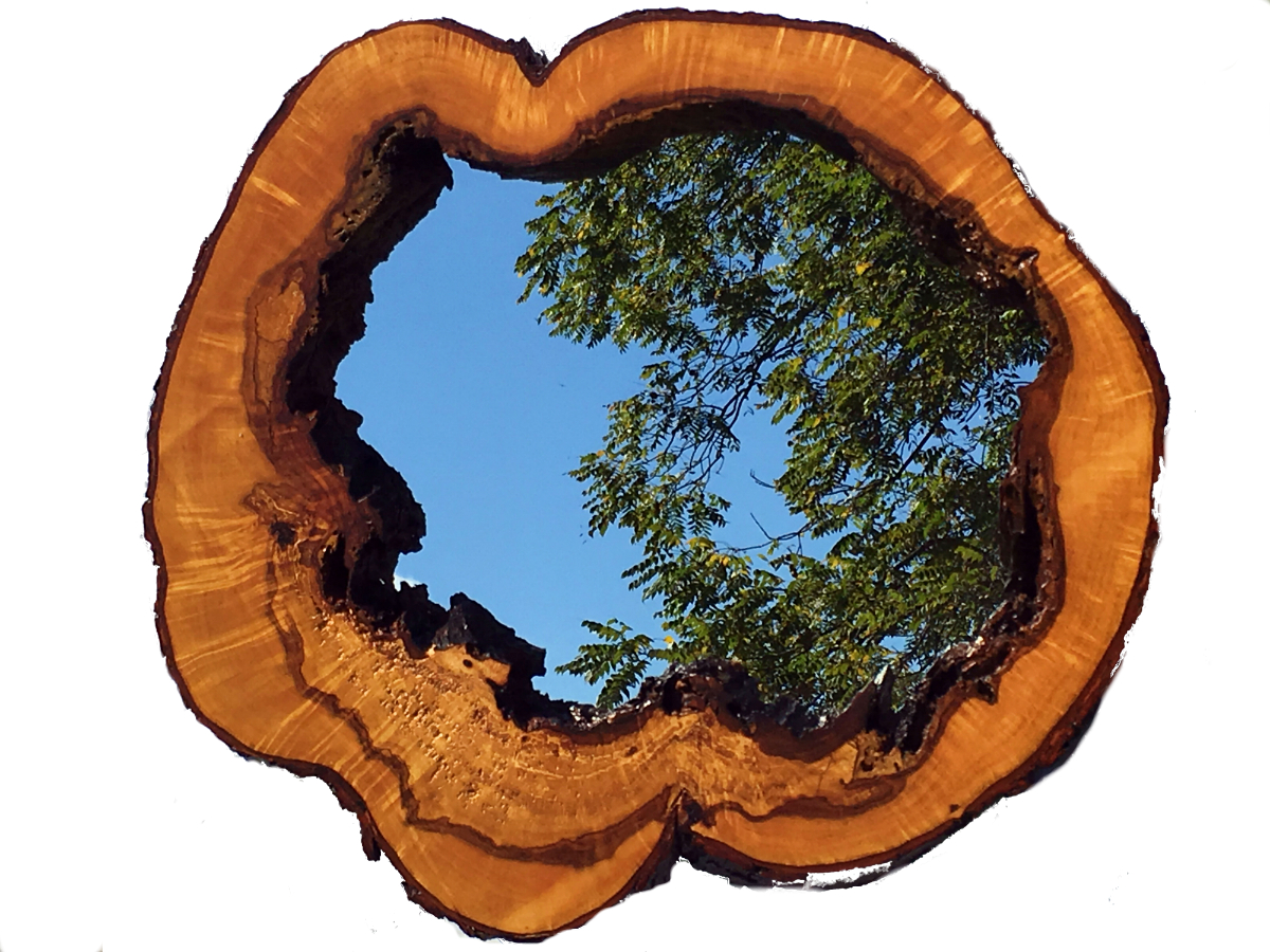 maple hollow trunk mirror