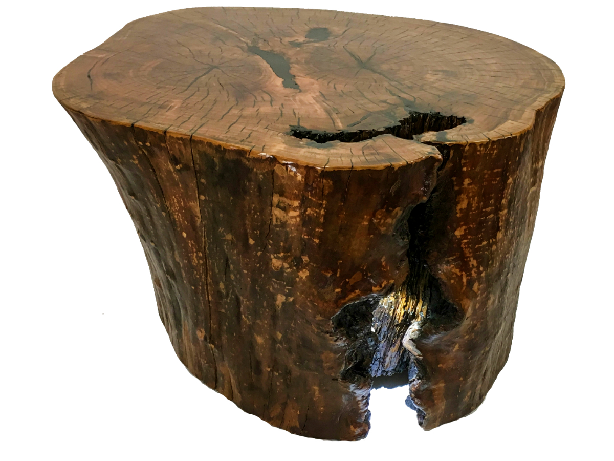 Rustic Cherry Stump Coffee Table Kyoutbackwoodworking Com