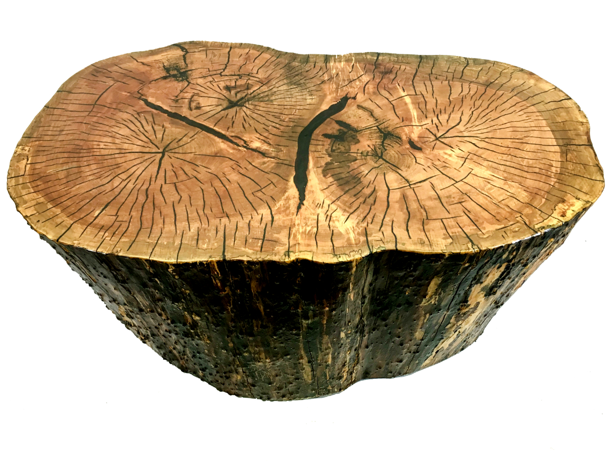 3-tree maple stump coffee table