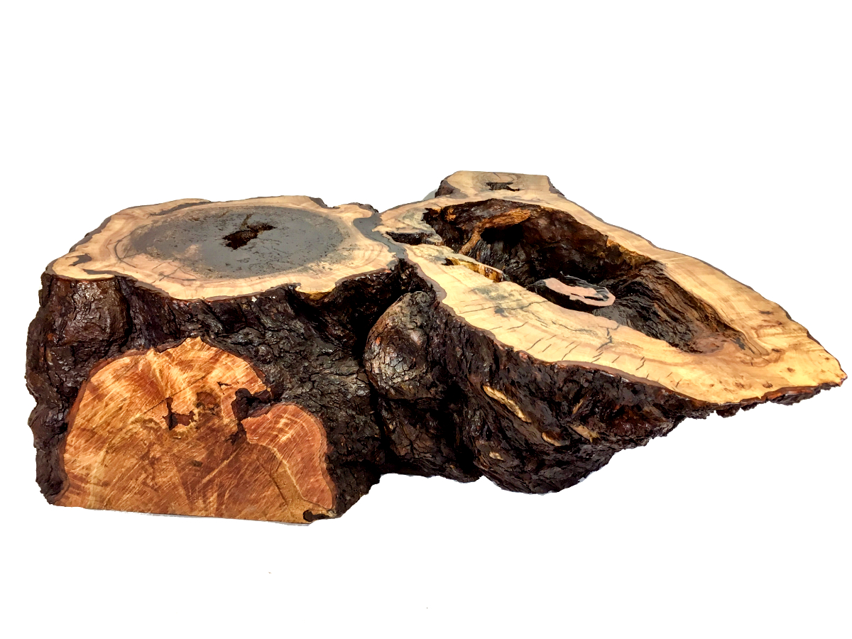 gnarled maple stump table