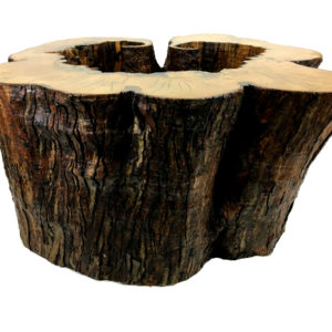 Naturally Hollow Maple Coffee Table
