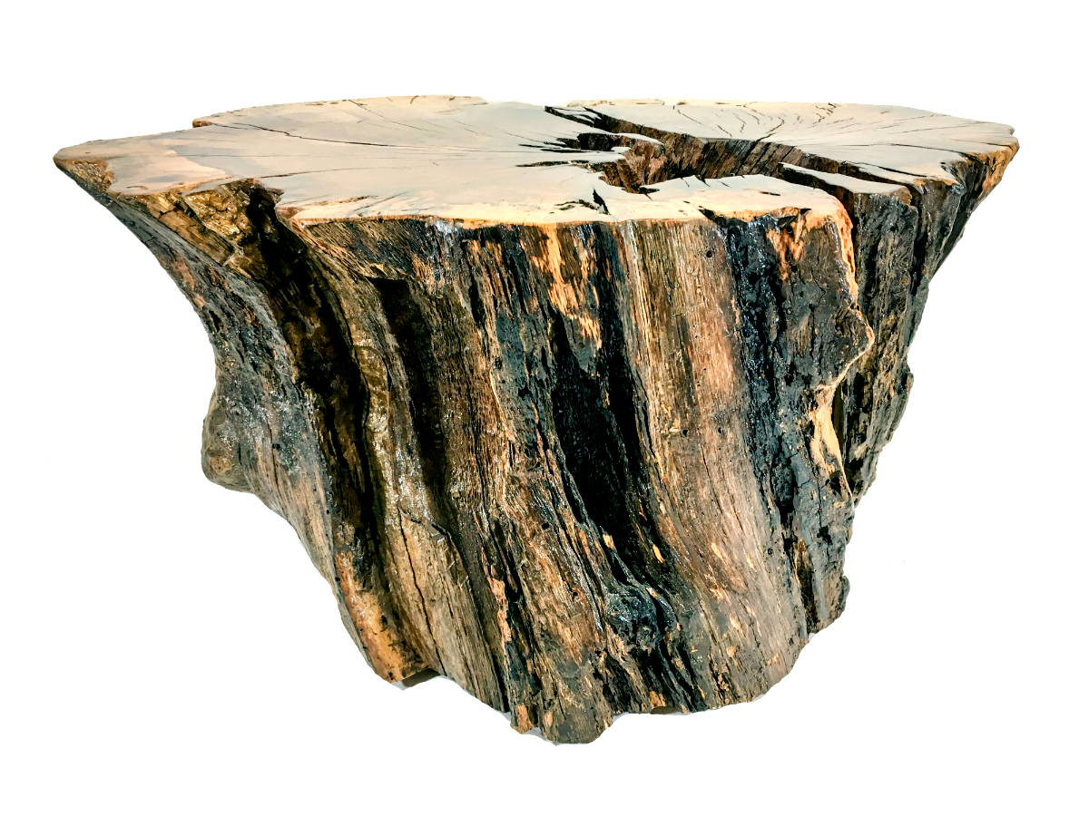 This solid wood stump coffee table will add a twist of natural beauty to your home. Add a piece of glass of your choice for an extra touch of elegance.